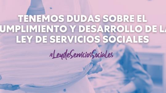 Ley de Servicios Sociales